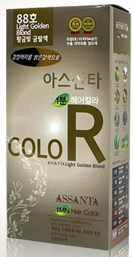 Assanta Hair Color # 88 Minute 60g (Light Golden Blond)